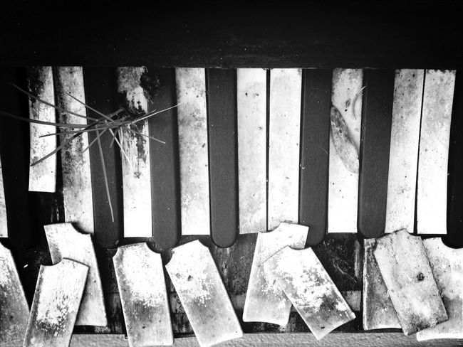 Piano Requiem Black And White Black & White