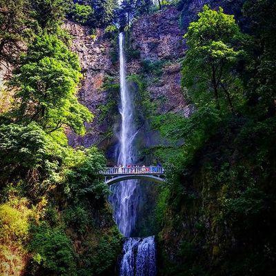 Multnomah Falls, OR. Waterfall MultnomahFalls Portland Oregon Pdx Hiking Adventure Golivexplore Oregonexplored TravelOregon Topography Nature Water Bridge Adventure Forest_masters Folkgood Oregonnw Pacificnw PNW PNWonderland Pacificwonderland Visitpnw
