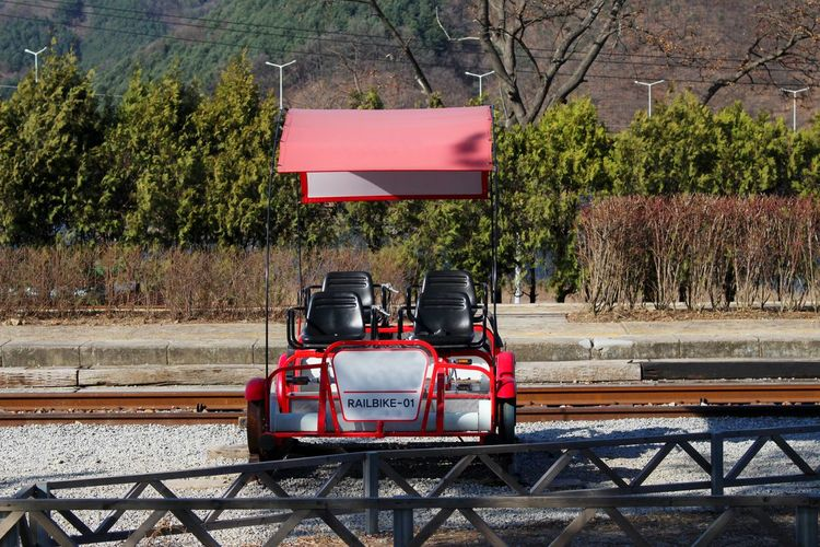 Rail Bike Gangchon Green Color Street Growth City Sunlight Outdoors Real People Travel Road Motion Red Nature Day Plant Land Vehicle Tree Mode Of Transportation Transportation