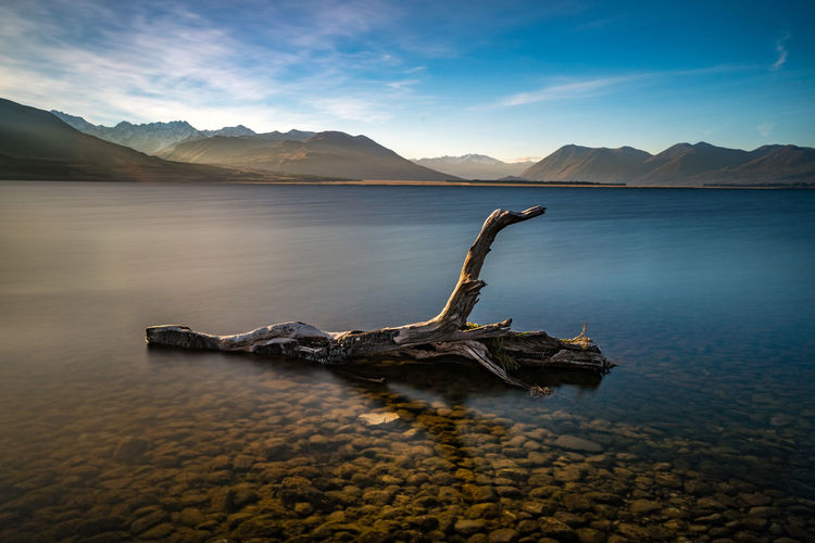 Driftwood by lake against sky