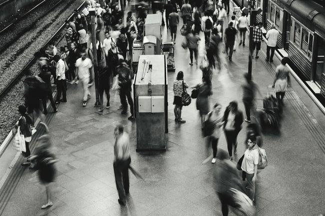 Estação Da Luz Cotidiano
