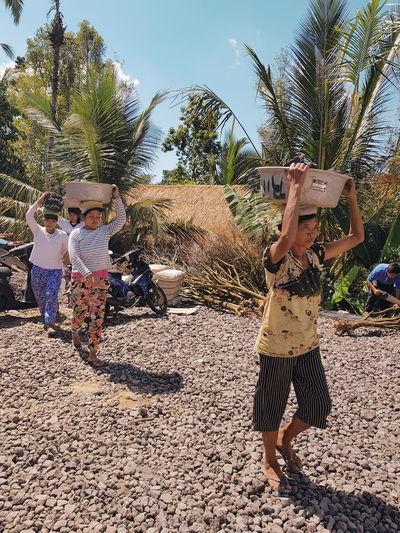 Rear view of people walking on palm tree