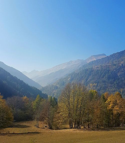 Mountain View Autumn Autumn Colors Panoramic Travel Destination Tree Nature Beauty In Nature Agriculture Outdoors Scenics Mountain Landscape No People Rural Scene Mountain Range Day Fog Sky Beauty
