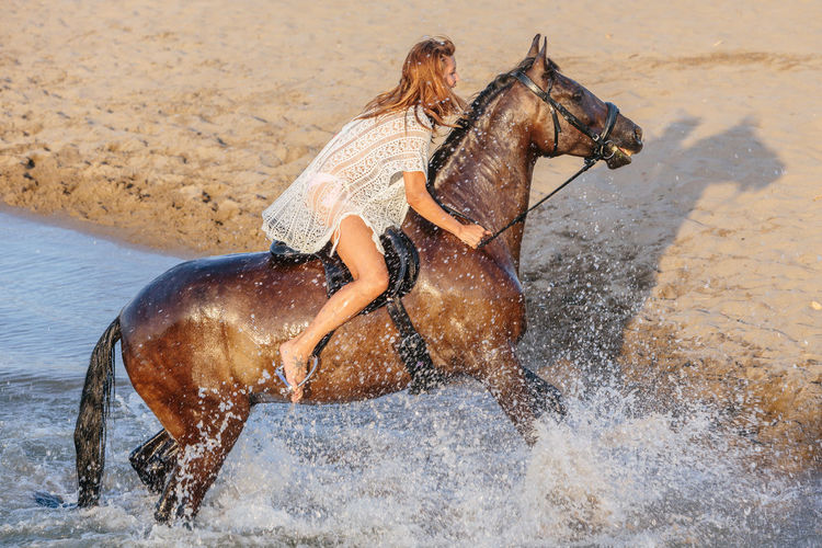 Man riding horse in water