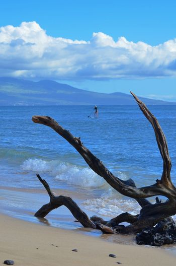 Hawaii Maui Stand Up Paddle #SUP Stand Up Paddling Beach Beauty In Nature Cloud - Sky Day Driftwood Horizon Horizon Over Water Land Leisure Activity Nature Non-urban Scene One Person Outdoors Real People Scenics - Nature Sea Seaside Sky Tranquil Scene Tranquility Water