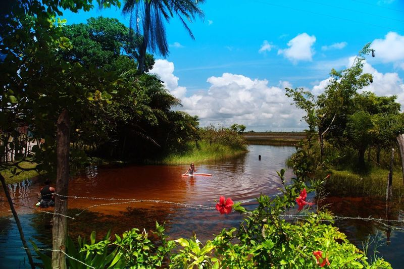 Ilha De Boipeba Rio Do Inferno Water Beauty In Nature Little Girl In The River Menina No Rio Real People Color Globephotography Mylife
