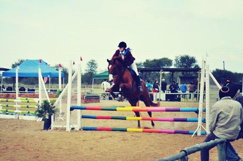 Equestrian Loving It