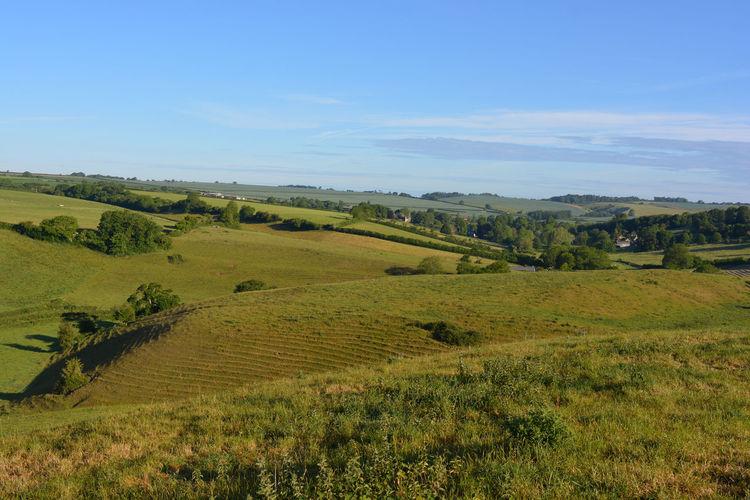 Farm fields and green rolling hills in summer, near poyntington, sherborne, dorset, england