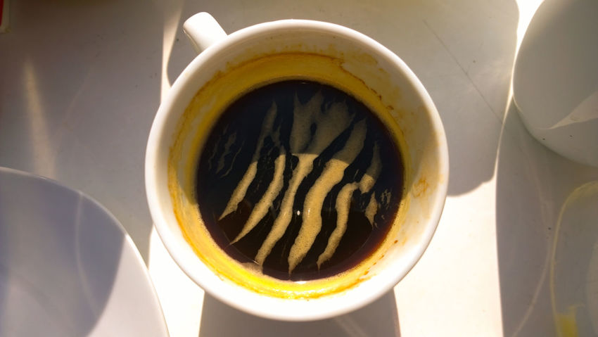Cafexperiment Close-up Coffee Coffee Coffee - Drink Coffee Cup Colour Of Life Cup Elevated View Freshness No People Refreshment Saucer Still Life Zebra