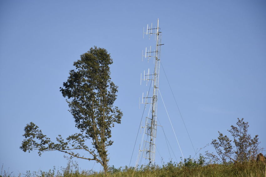 Antenna - Aerial Broadcasting Business Finance And Industry Clear Sky Communication Connection Day Global Communications Low Angle View Nature No People Outdoors Satellite Dish Sky Social Issues Technology Tecnology Meets Nature Telecommunications Equipment Tower Tree Wireless Technology