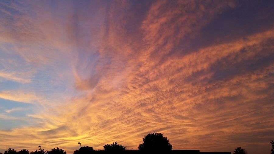 Orange Fan Sunrise Sunrise Orange Sunrise Fanned Clouds Backlit Sunrise Utica, MI Color Of Life