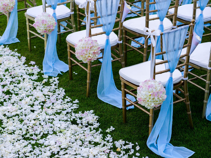 Blooming Ceremony Chairs Flower Flower Head No People Wedding
