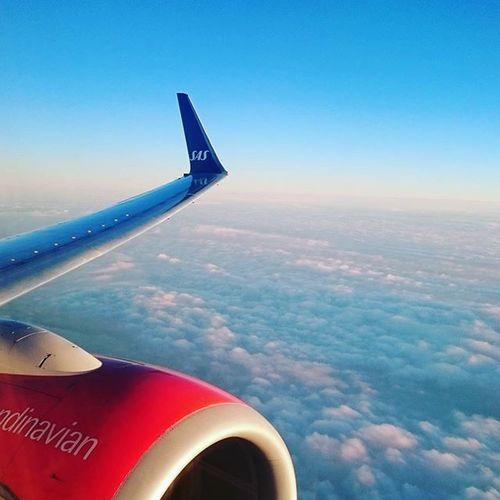 It's beautiful in the sky. Sas Scandinavianairlines Vinglet Boeing737 Airplane Airline Morningflight Cruisingaltitude Människobynnästa