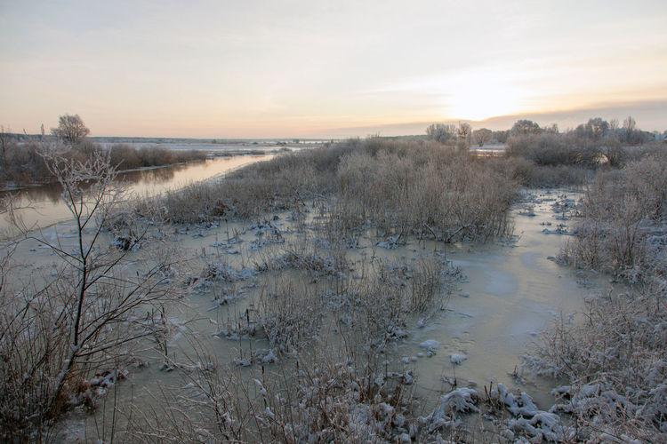 Narew river in