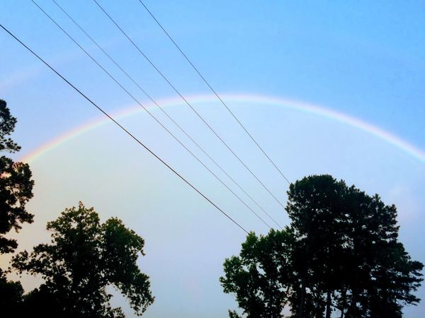 EyeEm Selects Bauxite Arkansas Tree Sky No People Low Angle View Rainbow Nature Cable Outdoors Day Vapor Trail