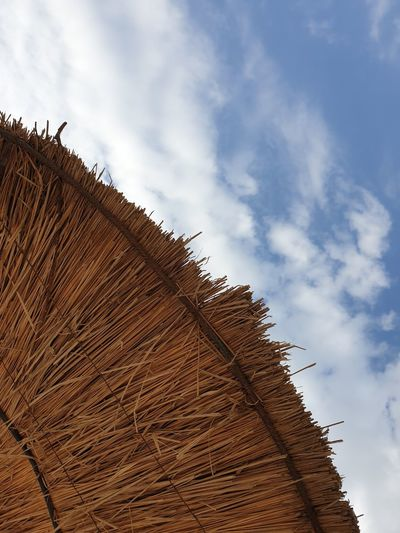 Low angle view of hay bales on landscape against sky