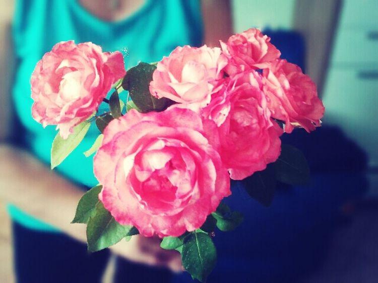 Natur Flowers Rose♥