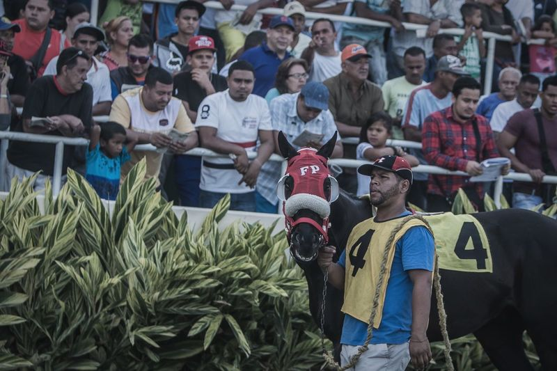 Everybody's watching Horse Horse Riding Sports Photography Caballos