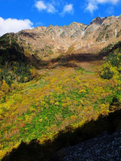 Plant Scenics Landscape Nature Autumn Montagne Automne Hiking Japan Japon Beauty In Nature Sky Day Outdoors Hill No People Tree
