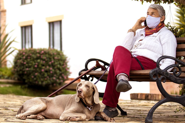 Man with dog sitting on street against white background