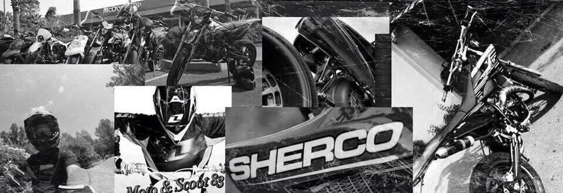 Cross Sherco Sherco50 Perso Fox Racing  alors ???