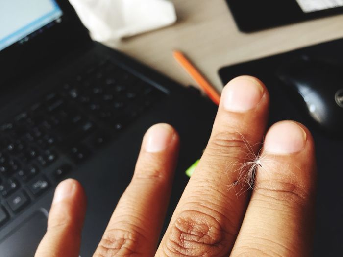 Office time White Pollen PhotoNepal Fly EyeEm Selects Human Hand Human Body Part Laptop Technology Human Finger Wireless Technology Indoors  Communication Inner Power