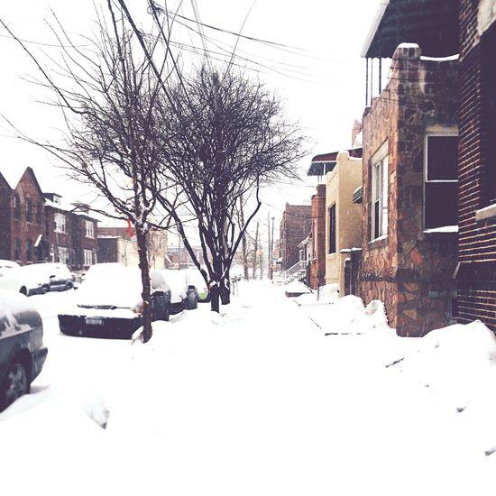 Snow ❄ Snow Winter Morris Park