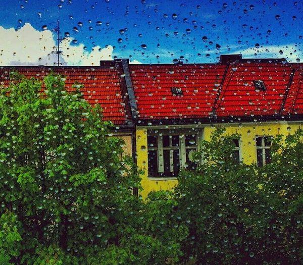Berlin Rain Hanging Out Relaxing