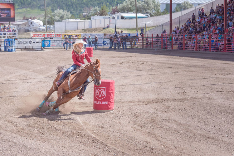 Williams Lake, British Columbia/Canada - July 2, 2016: horse and rider cut around the second barrel during the barrel racing competition at the 90th Williams Lake Stampede 90th Williams Lake Stampede British Columbia, Canada Horse And Rider July Rodeo Skill  Woman Arena Audience Barrel Racing Bravery Courage Cowgirl Dangerous Documentary Editorial  Extreme Sports Female Horse Race Professional Rodeo RISK Stampede Stampede Grounds Stands Summer