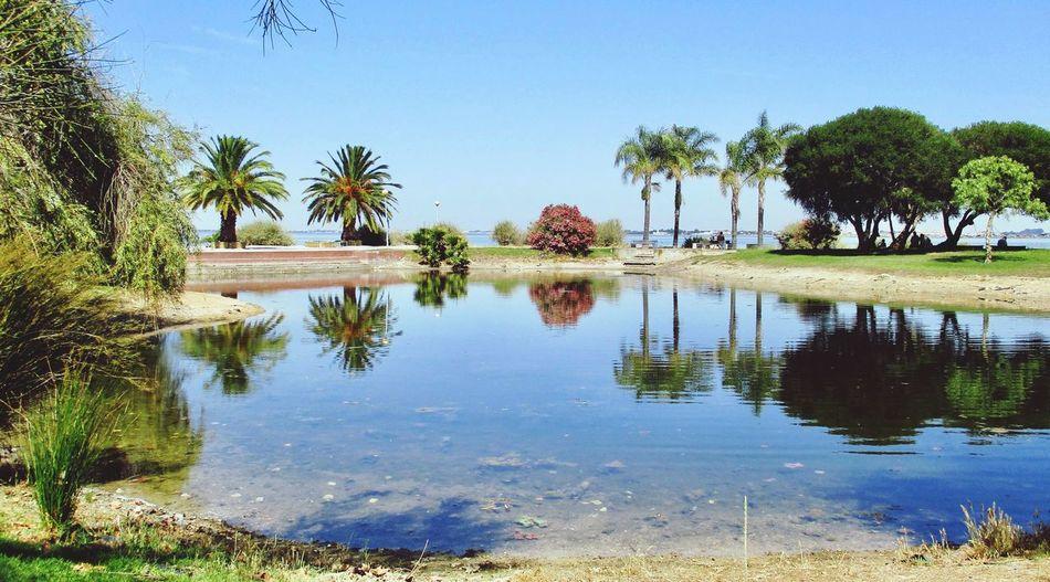 Parque Zeca
