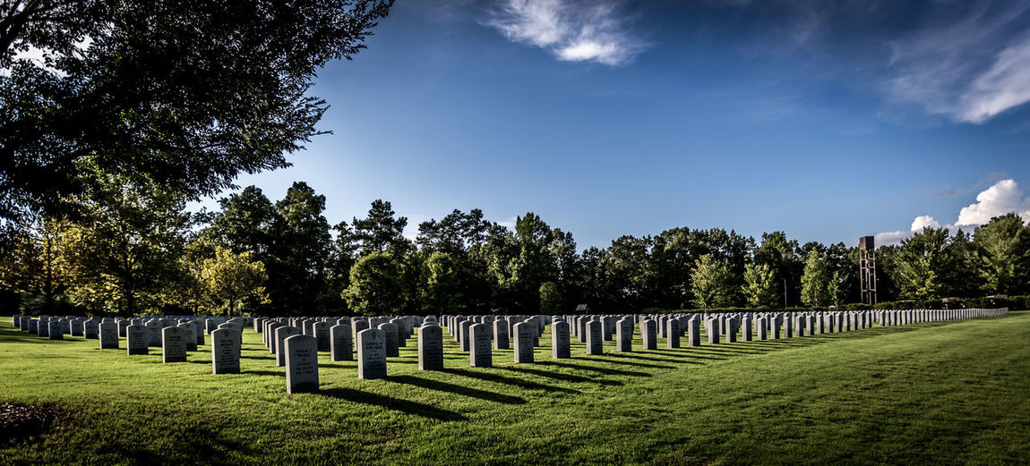 Georgia War Veterans Memorial Cemetery Atmosphere Atmospheric Mood Back Lit Cemetery Photography Cloud Cloud - Sky Cloudscape Cloudy Dramatic Sky Leading Moody Sky Narrow No People Outdoors Relaxing Moments Remote Silhouette Sky Storm Cloud The Way Forward Tree Veterans.
