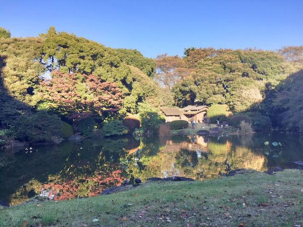 東博の庭園にて。 上野 東博