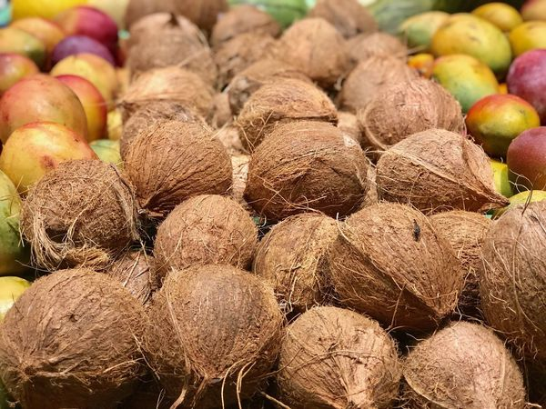 Coconuts on market Coconut Cocos Brazil Shop Mango Dry Coconut Food And Drink Food Freshness Large Group Of Objects No People Full Frame Healthy Eating Retail  Abundance Market For Sale Close-up Backgrounds Fruit Brown Wellbeing Market Stall Variation Choice