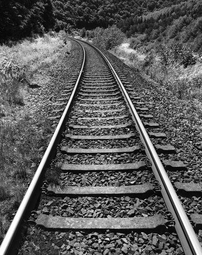 Railway tracks along landscape