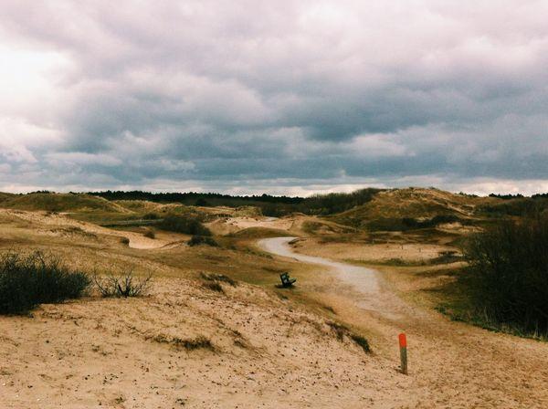☁️ Dunes in Noordwijk De Noordzee Duinen