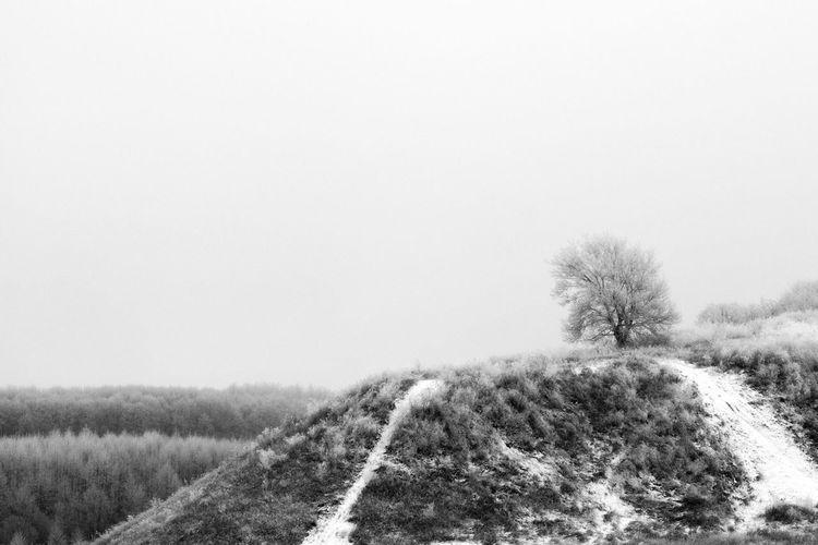 Relaxing Природа рыльск Landscape Mist Blackandwhite Black & White