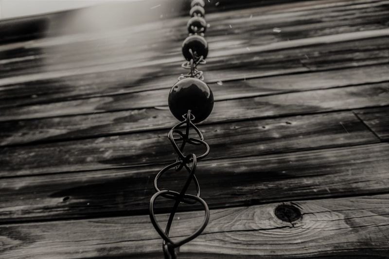 Close-up of water hanging on wood