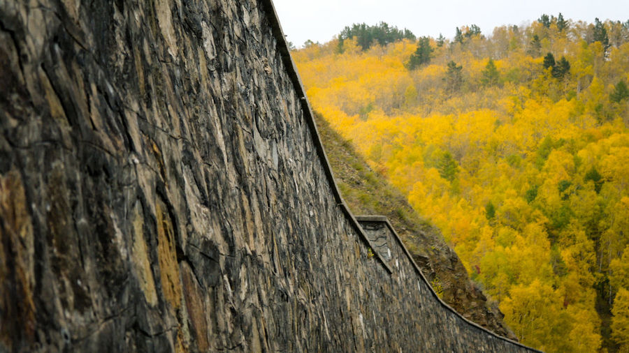2014 Autumn Baikal CircumBaikalRailway Fall Forest Irkutsk Lake Nature Outdoors Tunnel Байкал Иркутск кбжд кругобайкальская железная дорога осень Природа The Great Outdoors - 2017 EyeEm Awards