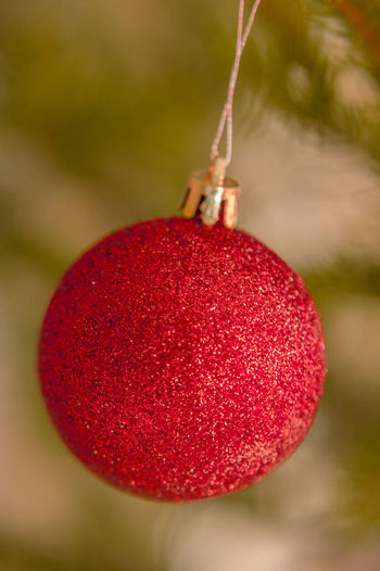 Close-up of christmas ornament hanging from tree