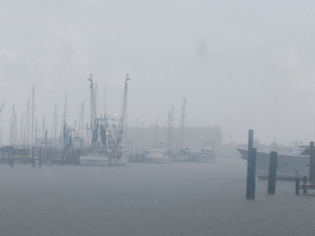 Raining in Harbor Boats And Water Dockside View Foggy Day Getting Wet Harbor View Ocean Water Rainy Day Shrimp Boats