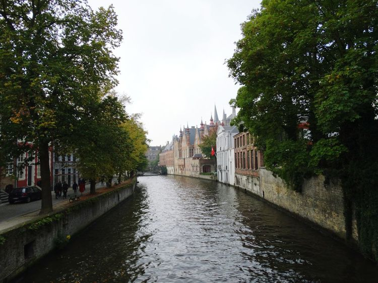 Water Cloud - Sky Sky Wet Tree City Architecture No People Outdoors Day Cityscape Building Exterior Flood Politics And Government Autumn Colors Travel Destinations Brugge, Belgium Autumn In Brugge Brugge Canal Built Structure Architecture Vacations Flamand Architecture Belgium