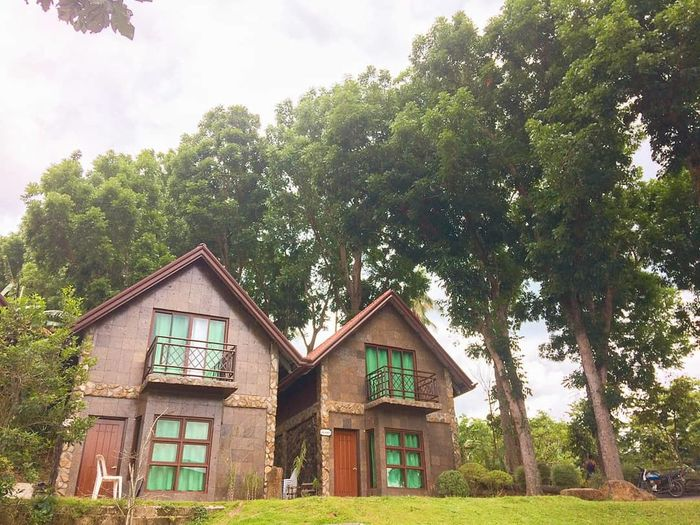 Cabin Shercon Shercon Resort Batangas Philippines Summer Tree House Sky Architecture Building Exterior Built Structure Grass Hut Beach Hut Log Cabin Cabin Country House Cottage Stilt House Thatched Roof Cultivated Land Agricultural Field Tree Trunk