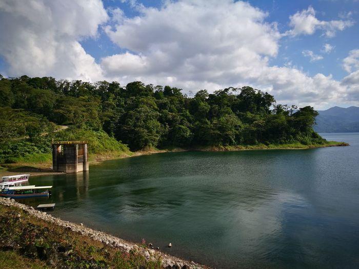 Water Reflection Tree Nature Lake Laguna Del Arenal Arenal Lake LA FORTUNA - SAN CARLOS