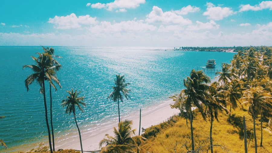 Paradise Sky Water Tree Plant Beauty In Nature Cloud - Sky Sea Nature Scenics - Nature Tropical Climate Palm Tree Tranquility Tranquil Scene Horizon Over Water Beach Land Day Horizon Growth Outdoors