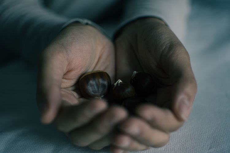 Cropped Hand Of Person Holding Chestnut Over Fabric