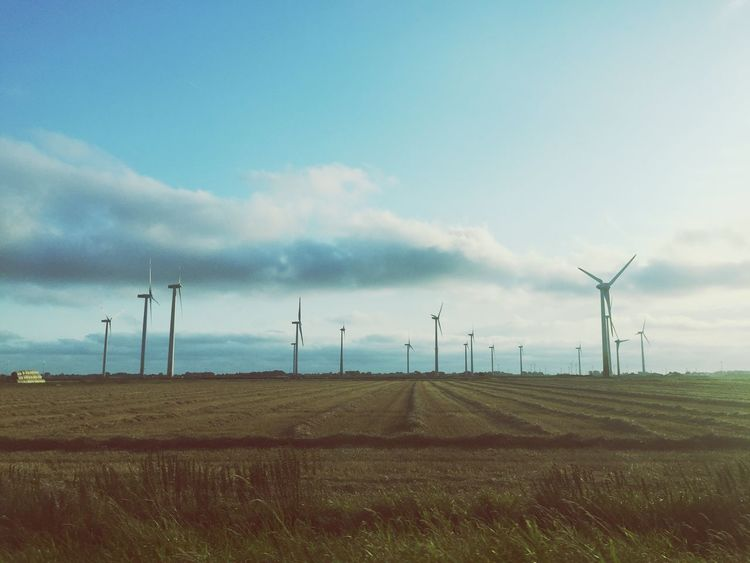 Wind Turbine Alternative Energy Fuel And Power Generation Wind Power Renewable Energy Windmill Field Environmental Conservation Rural Scene Landscape Environment Scenics Tranquil Scene Tranquility Sky Nature Day Blue Beauty In Nature Outdoors