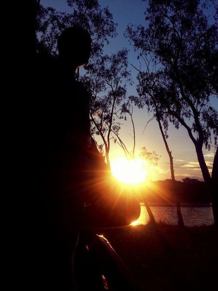 Sunset Silhouettes Lake Natural Beauty