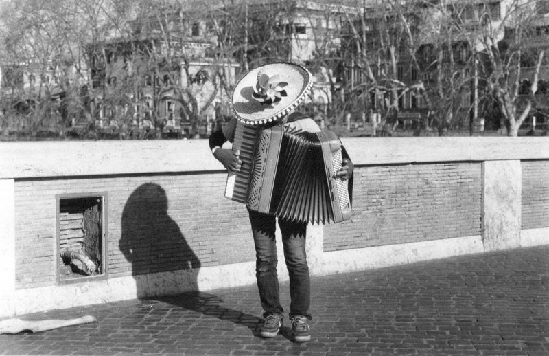 Squeeze box Hat