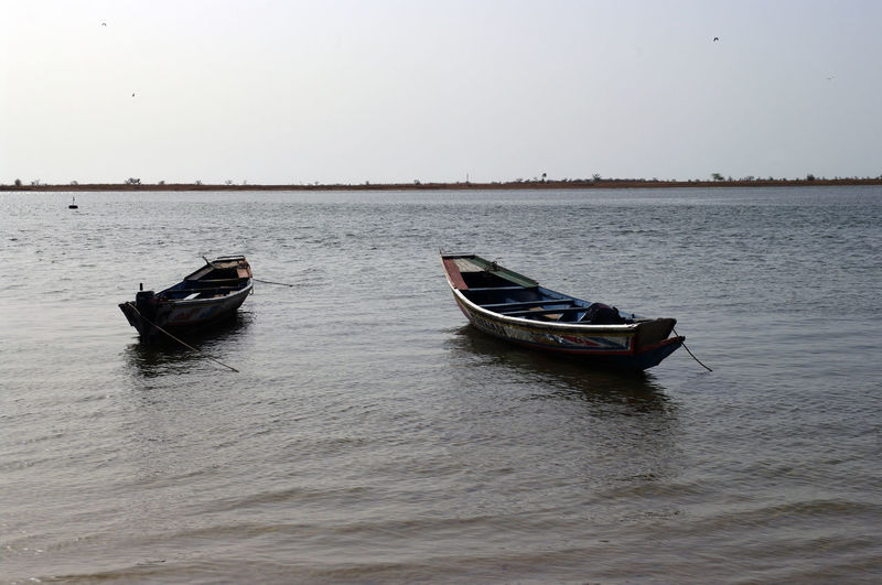 Senegalese pirogues waiting to be used to go fishing Africa Day Man Mangrove Nature Nautical Vessel No People Outdoors Senegal Sine Saloum Sky Water Waterfront West Africa