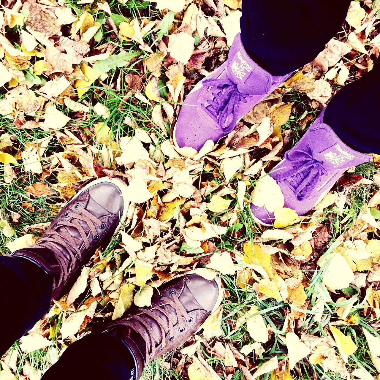 low section, human leg, shoe, high angle view, one person, day, standing, personal perspective, outdoors, human body part, real people, leaf, men, close-up, nature, people